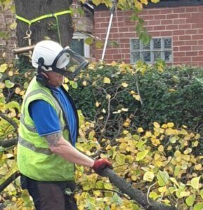 Working the ground - Lime Tree - Withington